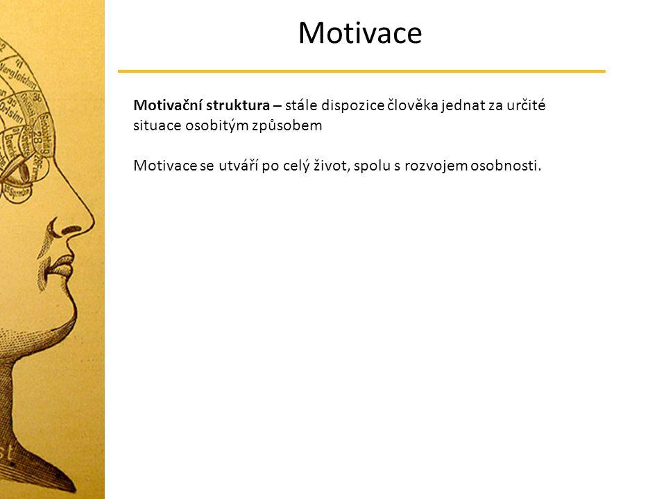 Motivace Motivační struktura – stále dispozice člověka jednat za určité situace osobitým způsobem.