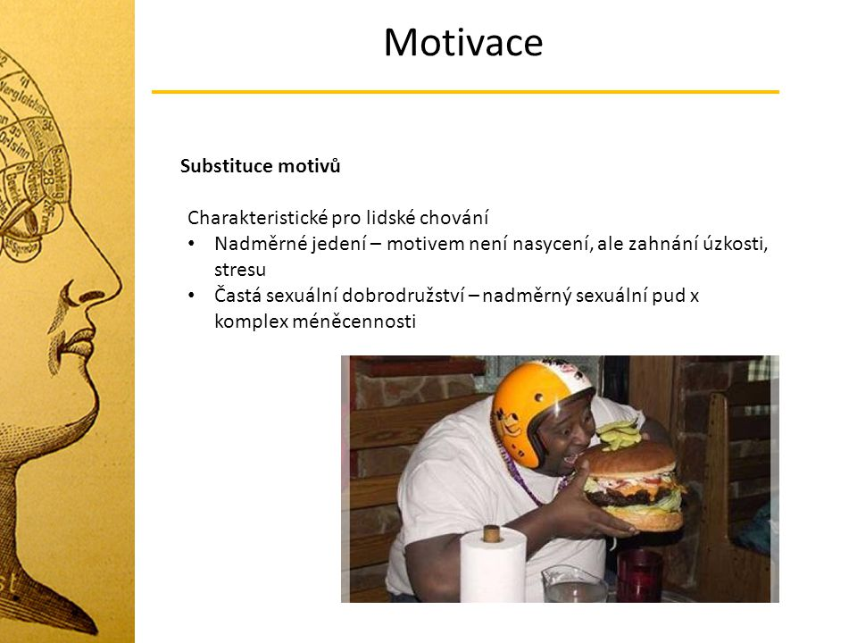 Motivace Substituce motivů Charakteristické pro lidské chování