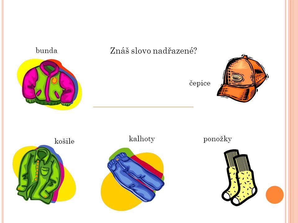 bunda Znáš slovo nadřazené čepice kalhoty ponožky košile