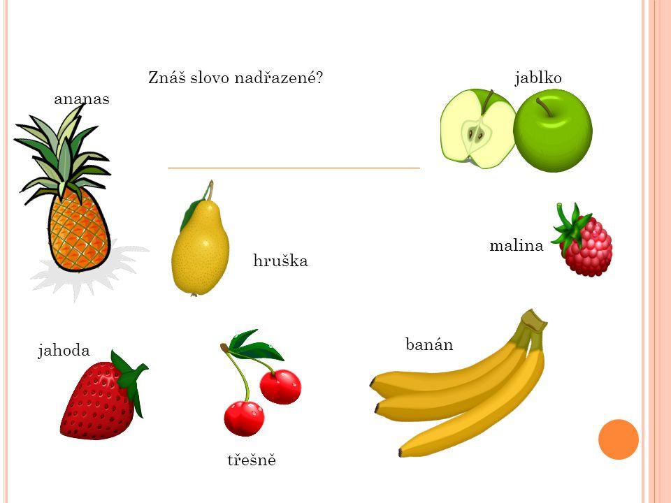 Znáš slovo nadřazené jablko ananas malina hruška banán jahoda třešně