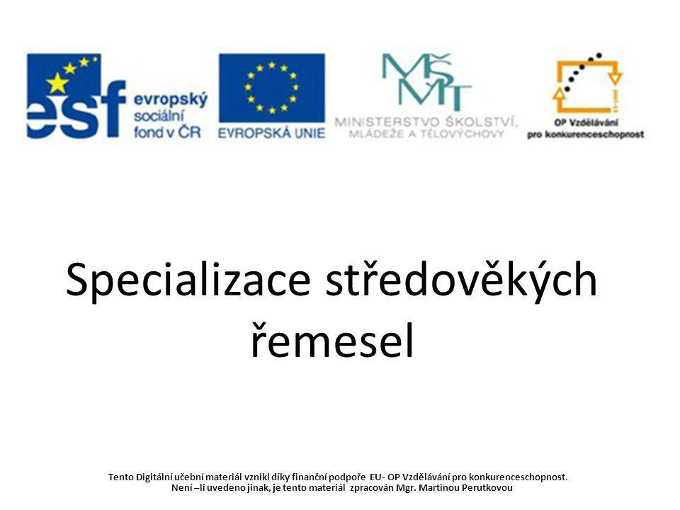 Specializace středověkých