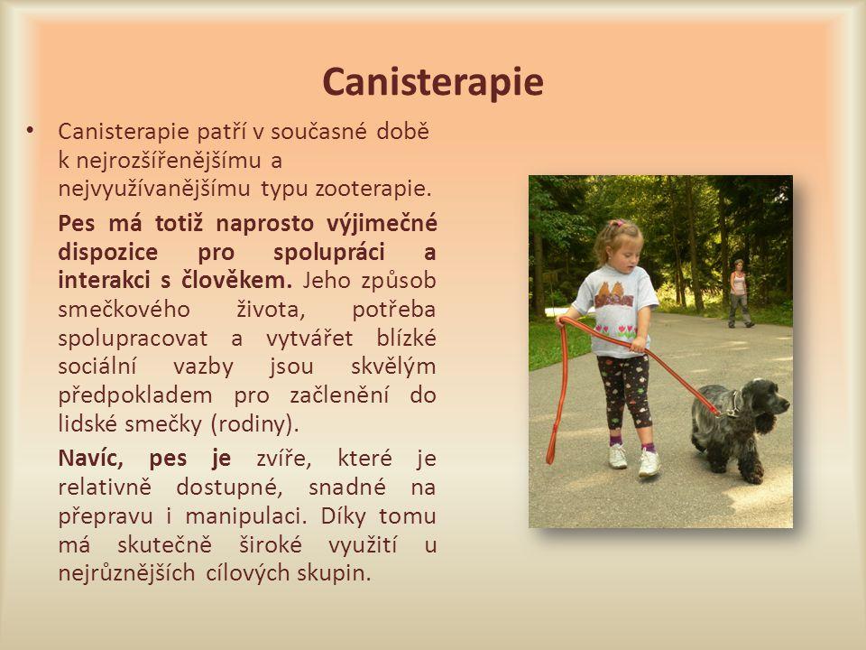 Canisterapie Canisterapie patří v současné době k nejrozšířenějšímu a nejvyužívanějšímu typu zooterapie.