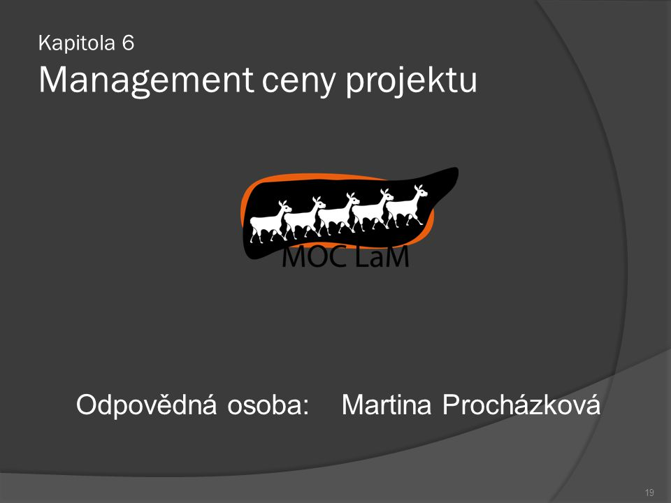 Kapitola 6 Management ceny projektu