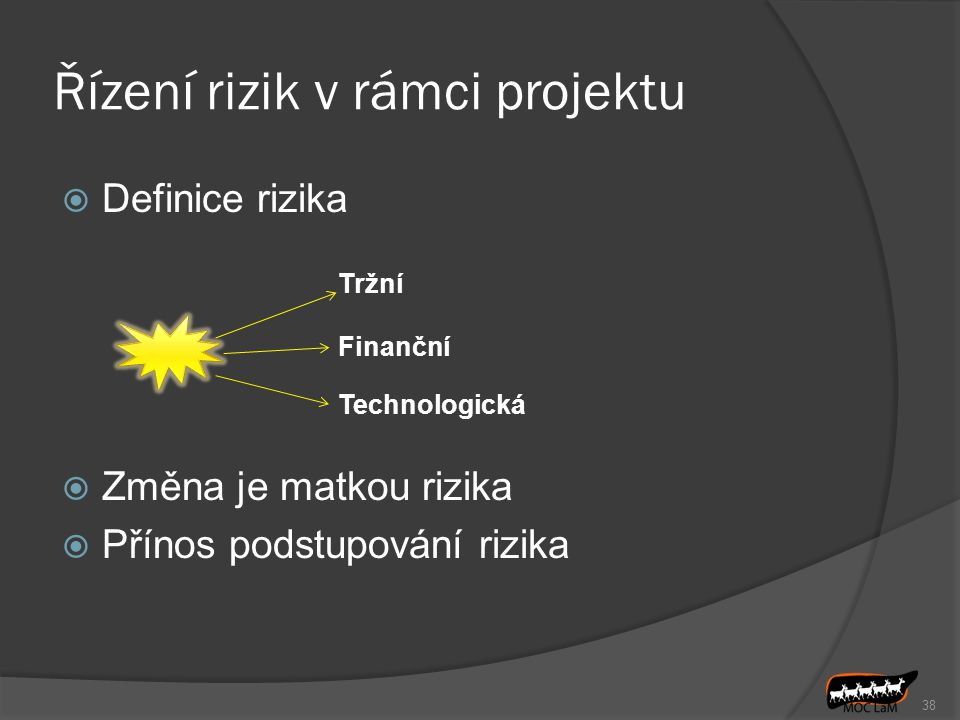 Řízení rizik v rámci projektu