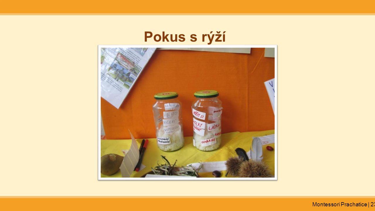 Pokus s rýží Montessori Prachatice | 23