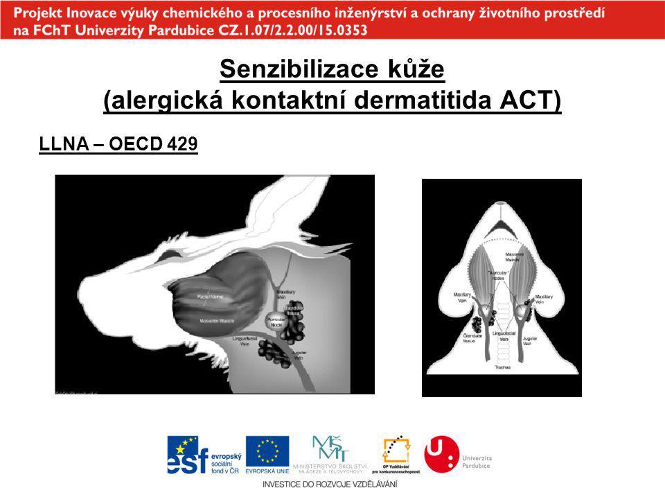 Senzibilizace kůže (alergická kontaktní dermatitida ACT)