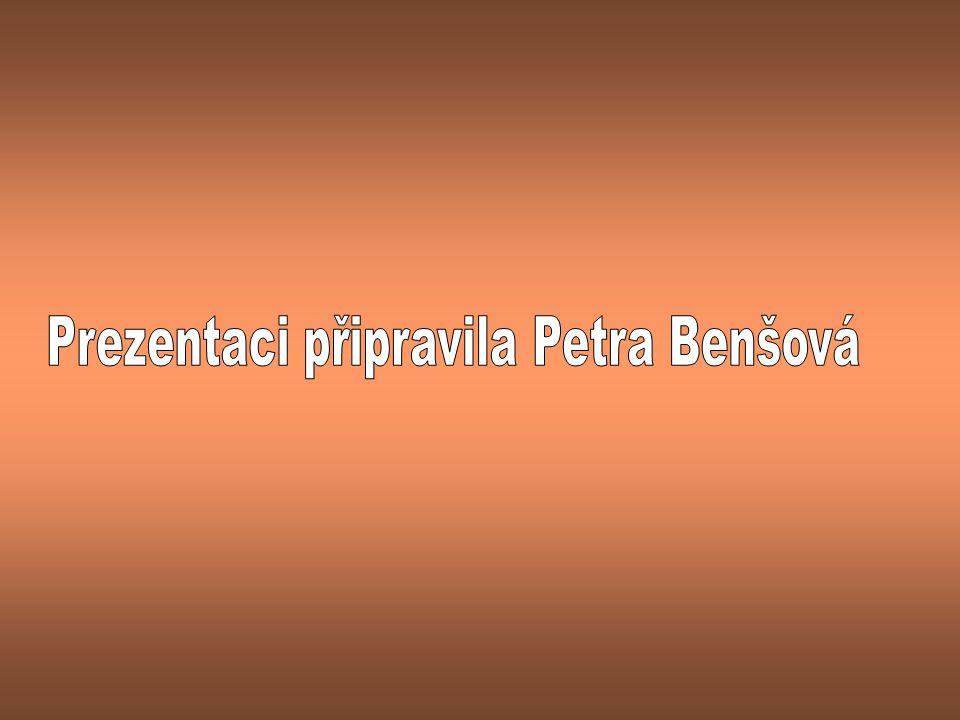 Prezentaci připravila Petra Benšová