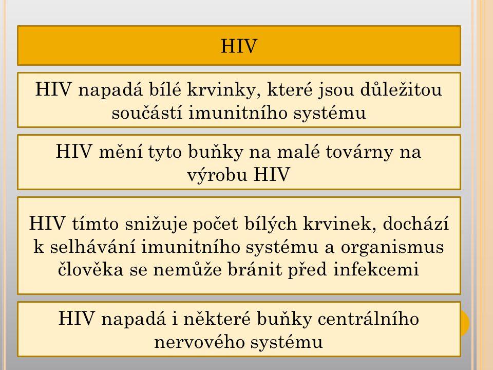 HIV mění tyto buňky na malé továrny na výrobu HIV