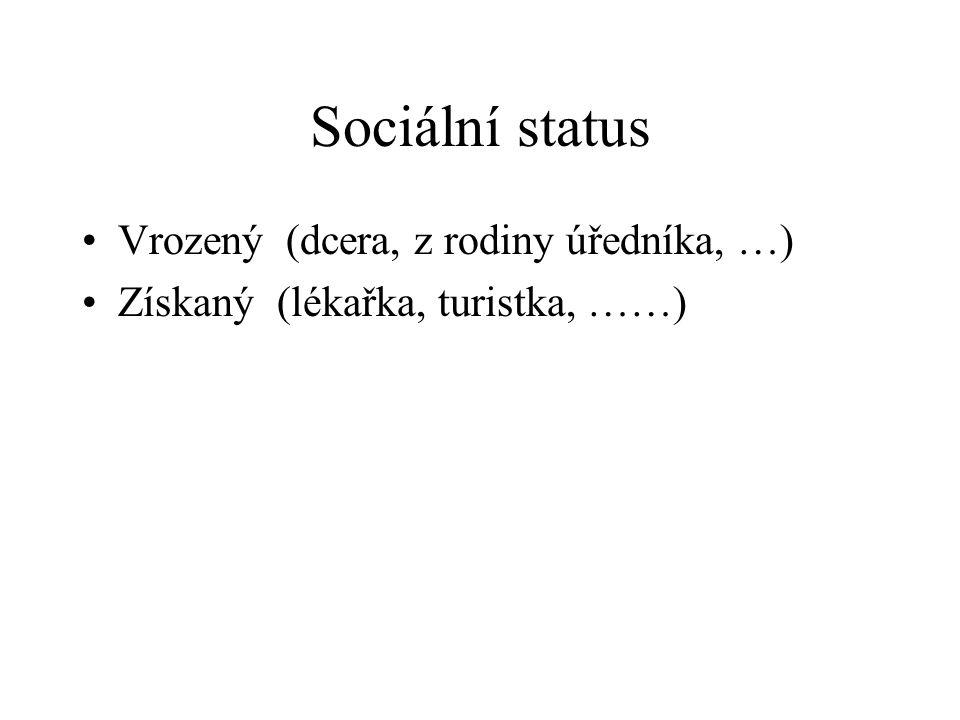 Sociální status Vrozený (dcera, z rodiny úředníka, …)
