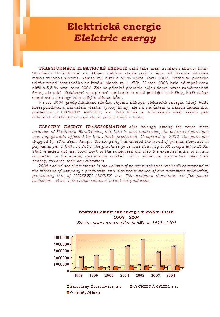 Elektrická energie Elelctric energy