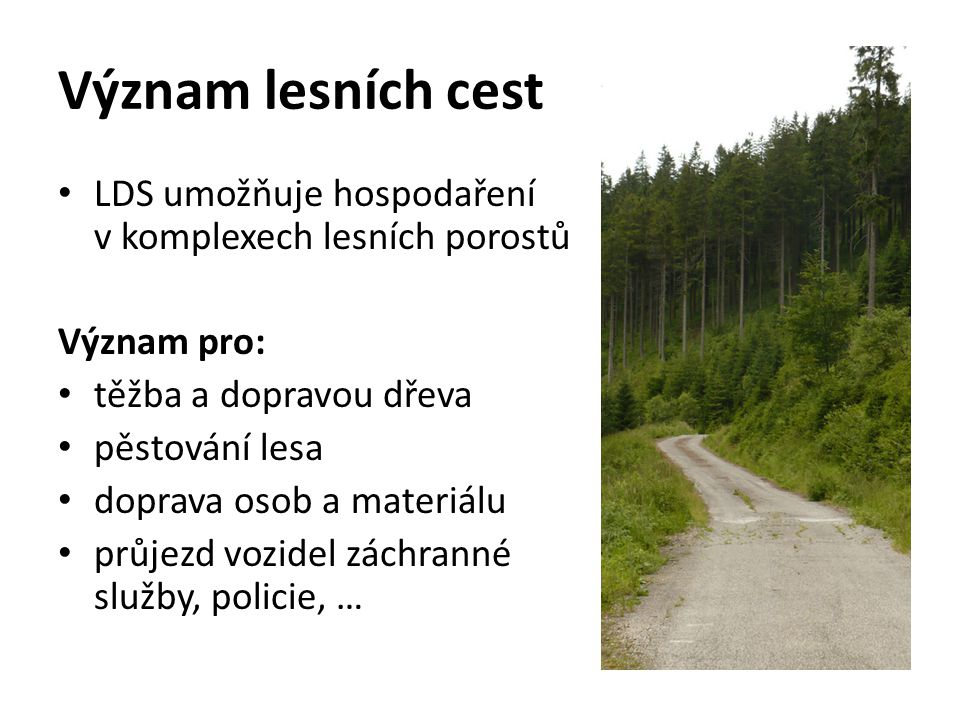 Význam lesních cest LDS umožňuje hospodaření v komplexech lesních porostů. Význam pro: těžba a dopravou dřeva.