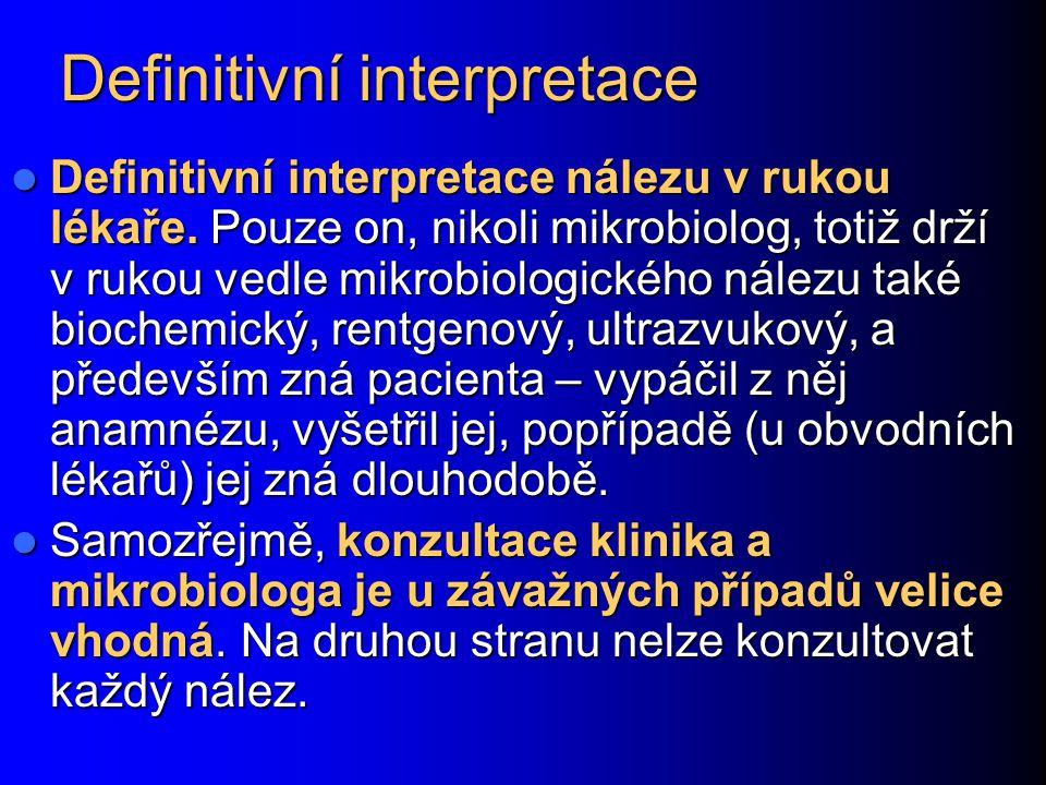 Definitivní interpretace