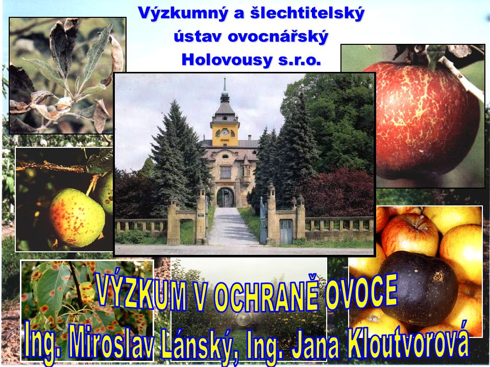 Ing. Miroslav Lánský, Ing. Jana Kloutvorová