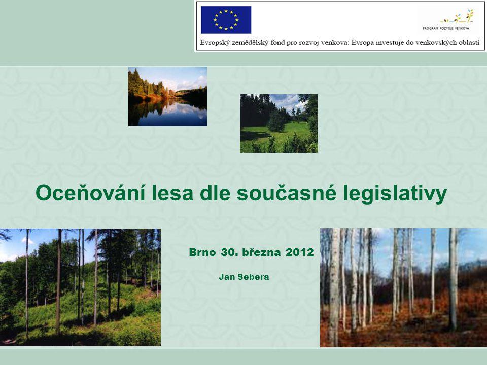 Oceňování lesa dle současné legislativy
