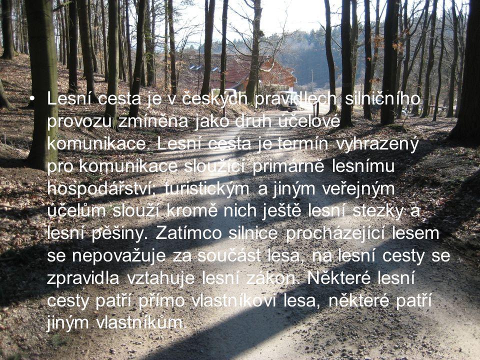 Lesní cesta je v českých pravidlech silničního provozu zmíněna jako druh účelové komunikace.