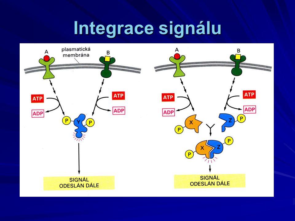 Integrace signálu