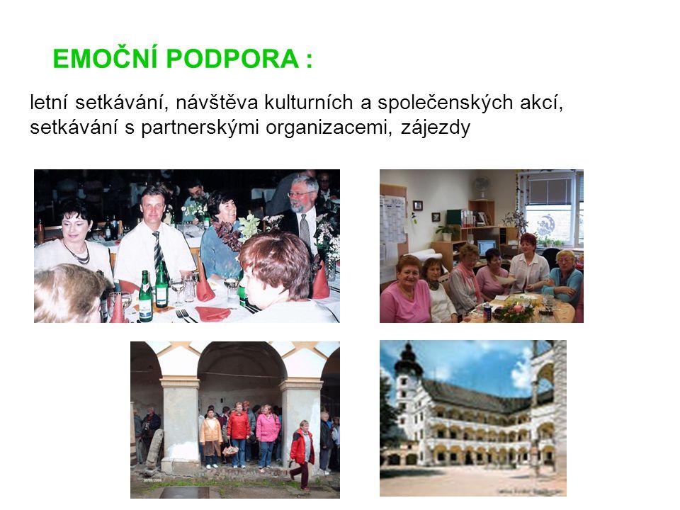 EMOČNÍ PODPORA : letní setkávání, návštěva kulturních a společenských akcí, setkávání s partnerskými organizacemi, zájezdy.