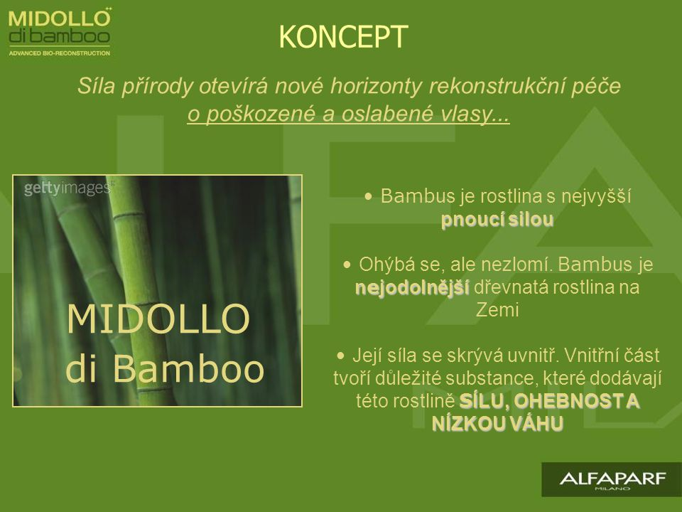 Bambus je rostlina s nejvyšší pnoucí silou