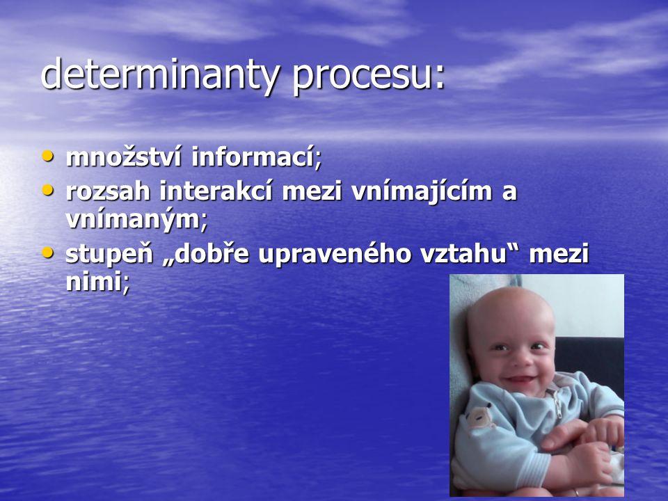 determinanty procesu: