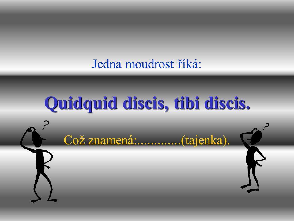 Quidquid discis, tibi discis.
