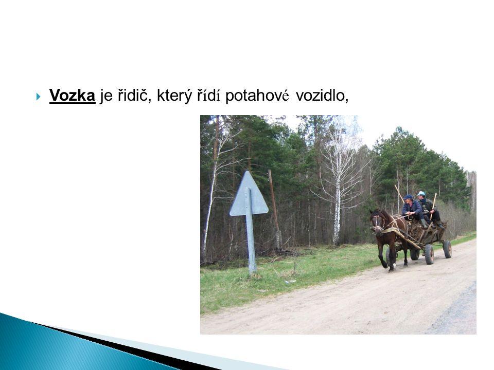 Vozka je řidič, který řídí potahové vozidlo,