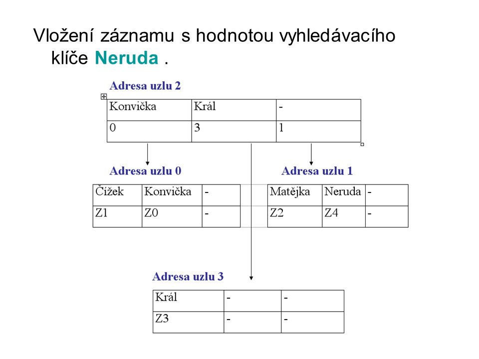 Vložení záznamu s hodnotou vyhledávacího klíče Neruda .