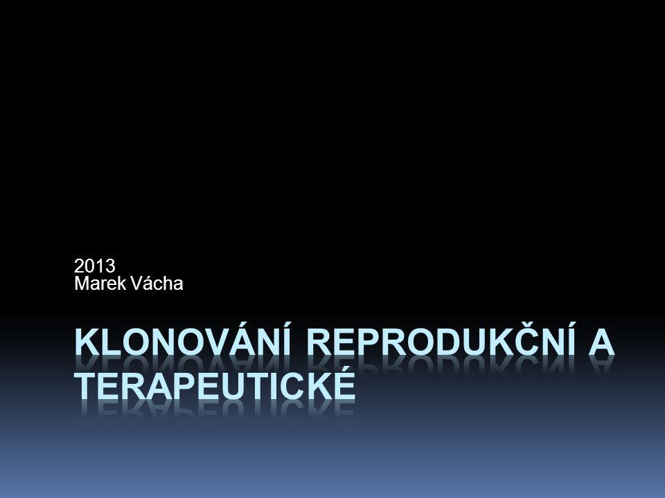 klonování reprodukční a terapeutické