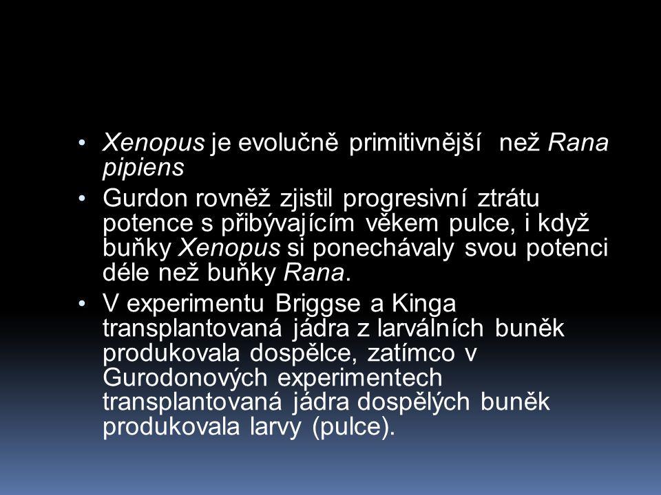 Xenopus je evolučně primitivnější než Rana pipiens