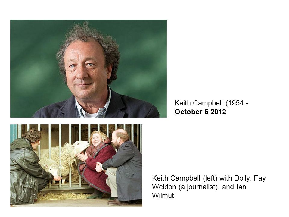 Keith Campbell (1954 - October 5 2012