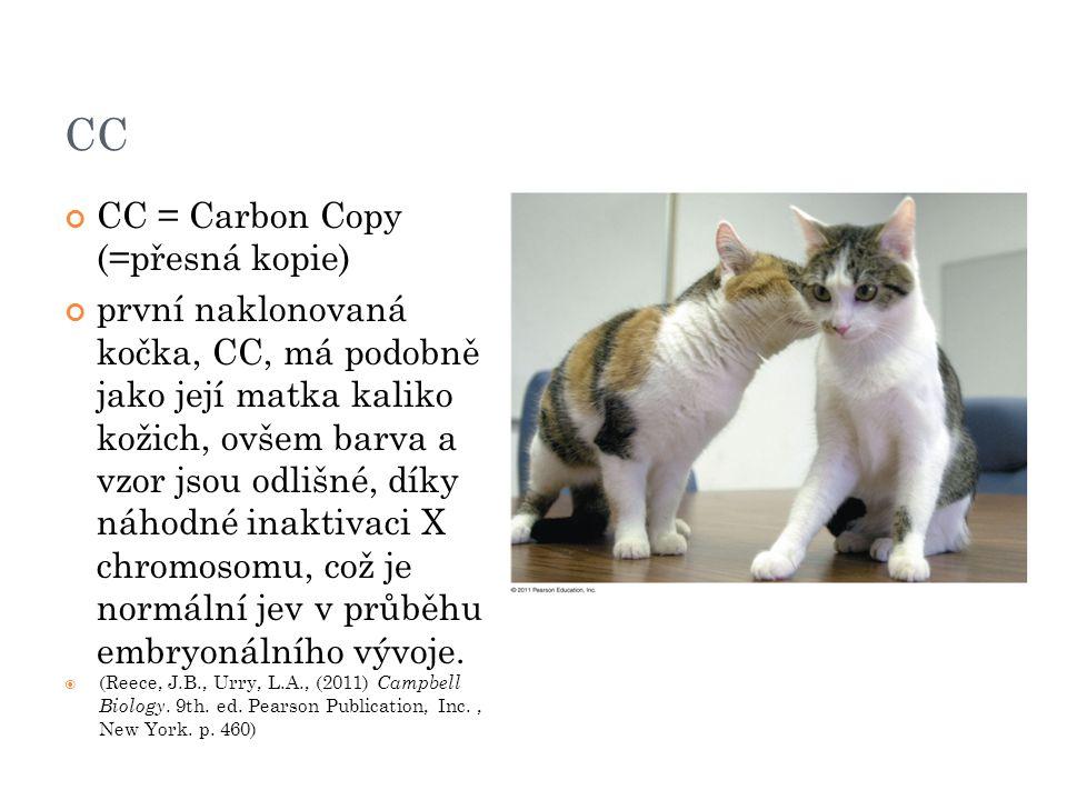 CC CC = Carbon Copy (=přesná kopie)
