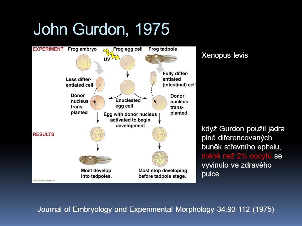 John Gurdon, 1975 Xenopus levis