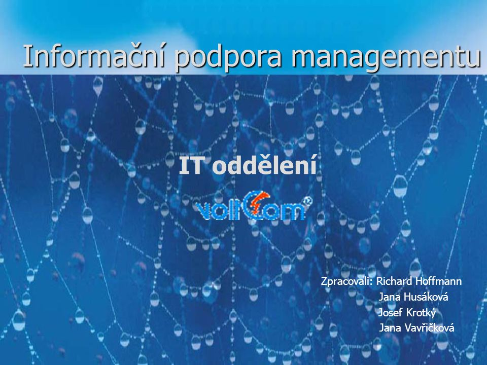 Informační podpora managementu