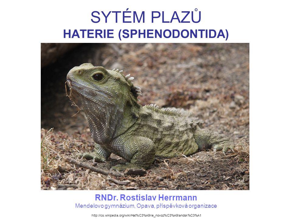 SYTÉM PLAZŮ HATERIE (SPHENODONTIDA)