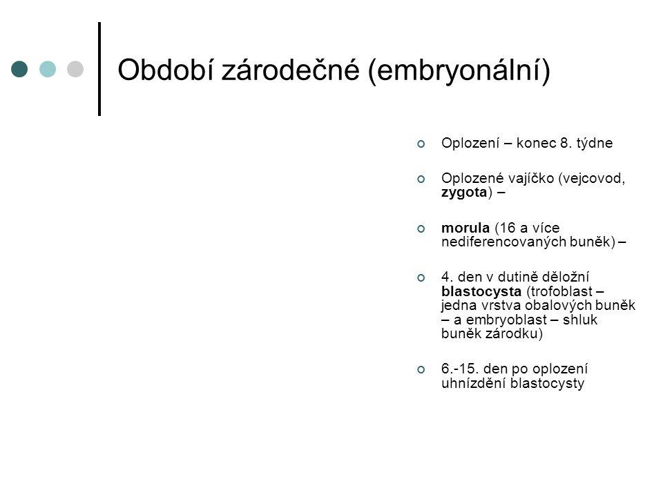 Období zárodečné (embryonální)