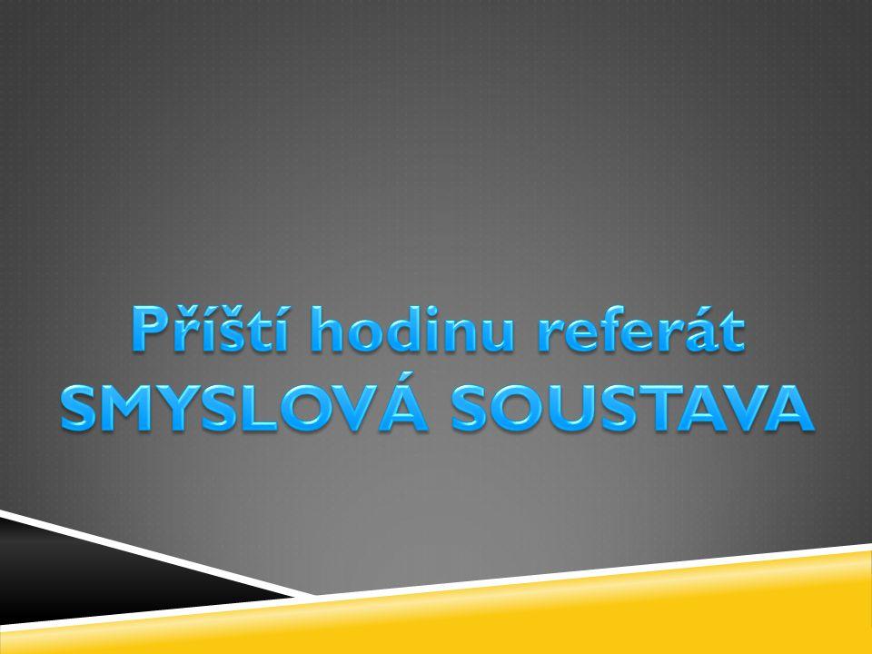 Příští hodinu referát SMYSLOVÁ SOUSTAVA