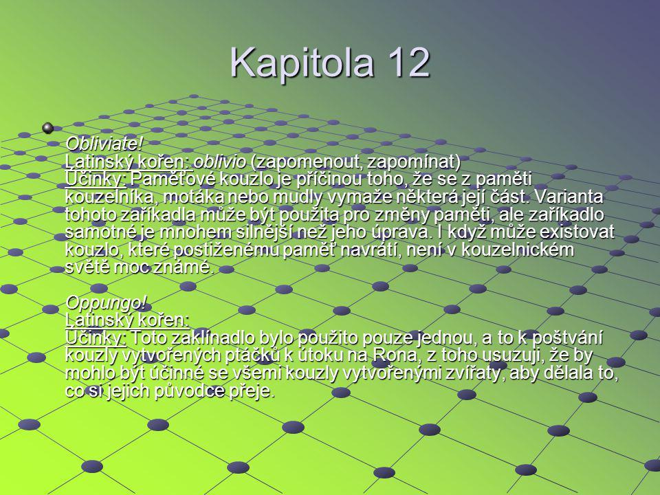 Kapitola 12