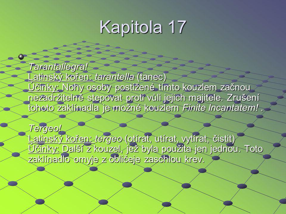 Kapitola 17