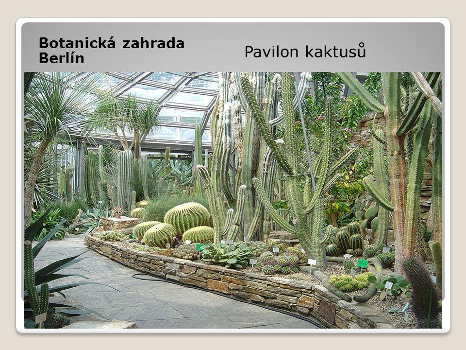 Botanická zahrada Berlín
