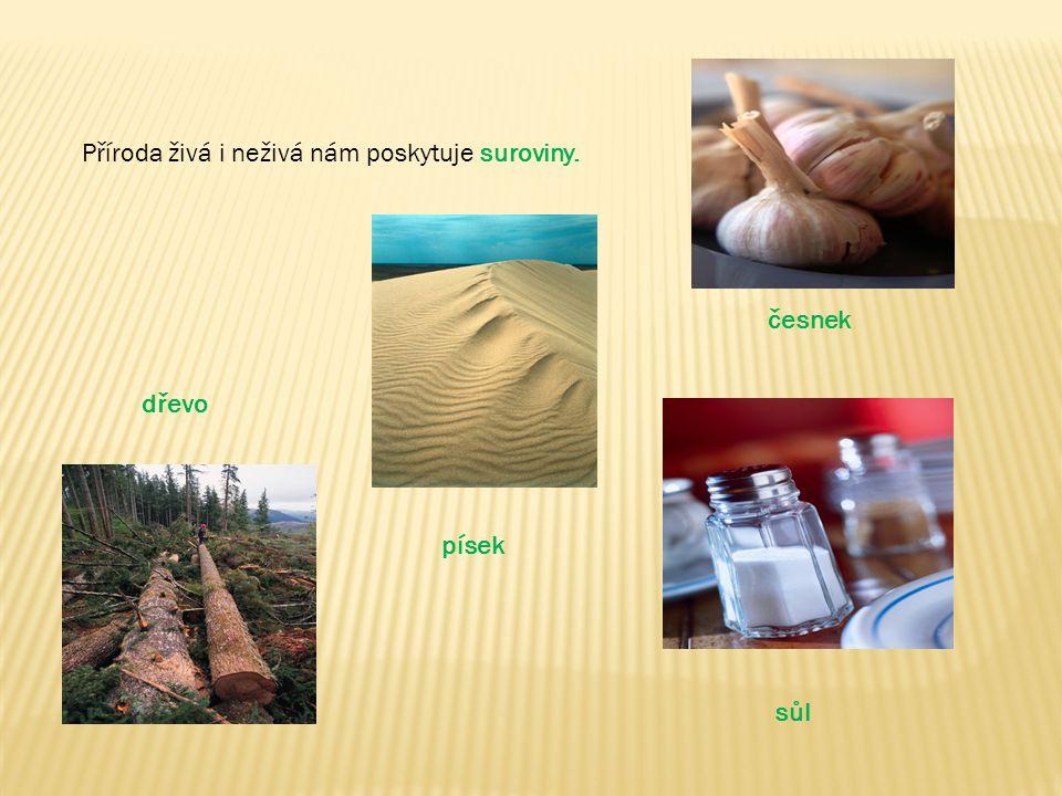 Příroda živá i neživá nám poskytuje suroviny.