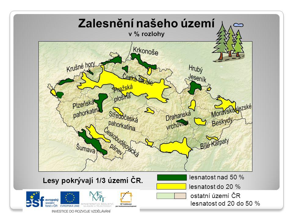 Zalesnění našeho území v % rozlohy