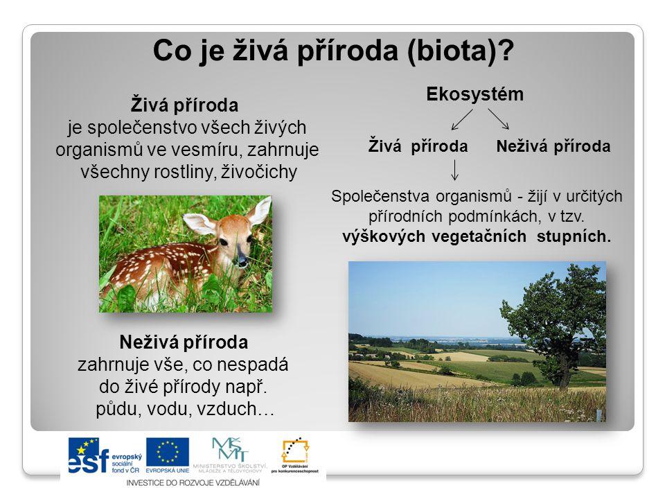 Co je živá příroda (biota)