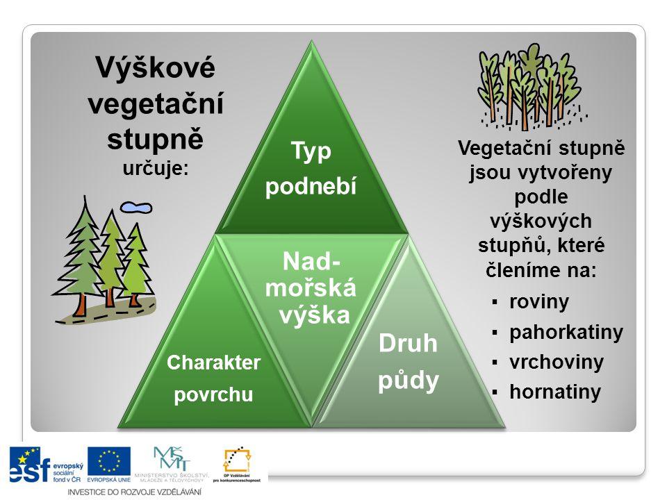 Výškové vegetační stupně určuje: