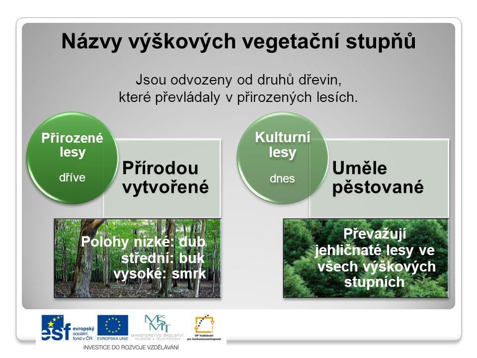 Názvy výškových vegetační stupňů