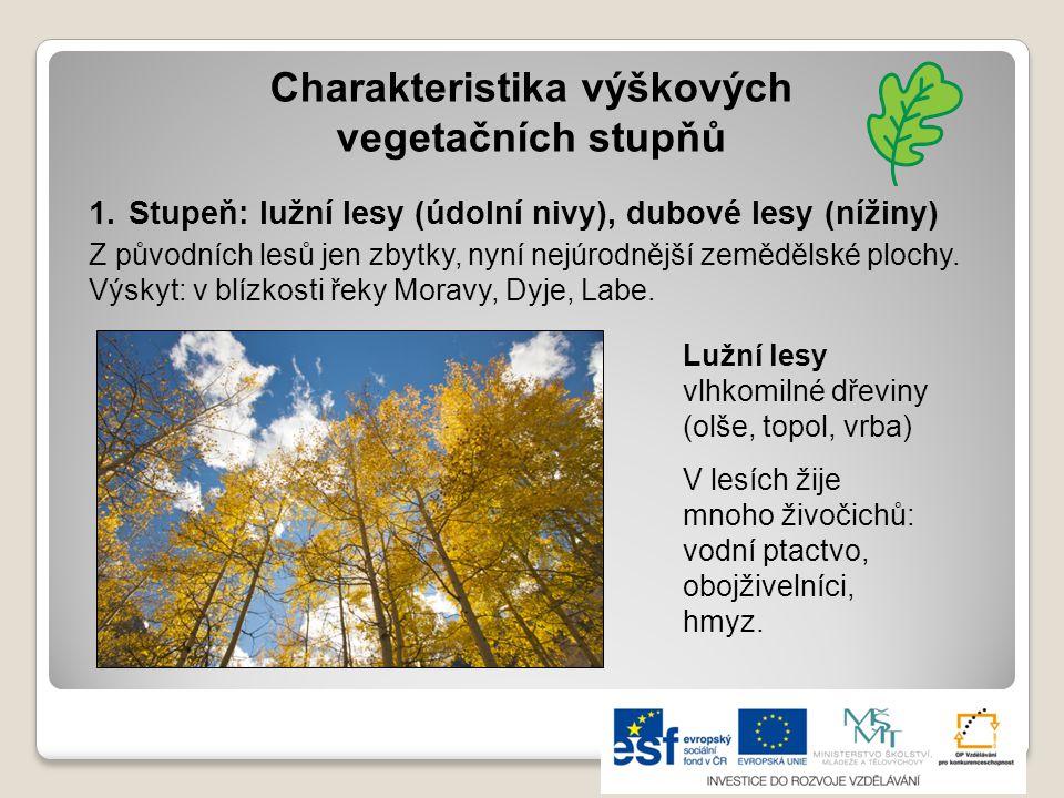 Charakteristika výškových vegetačních stupňů