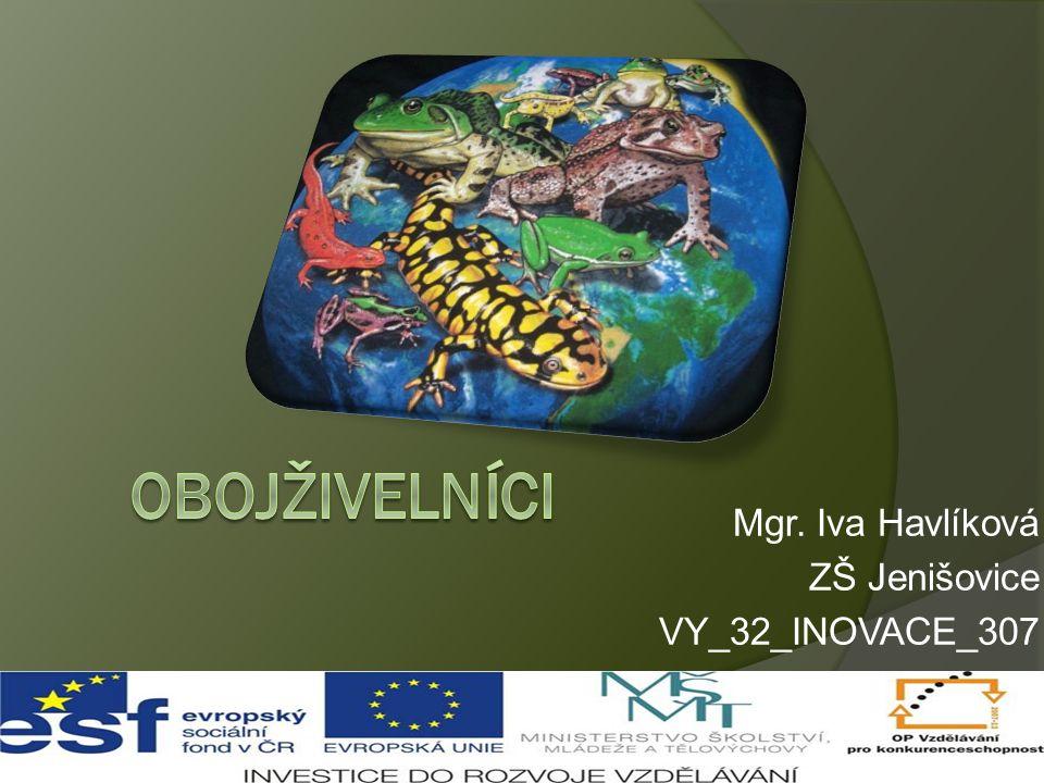 Mgr. Iva Havlíková ZŠ Jenišovice VY_32_INOVACE_307