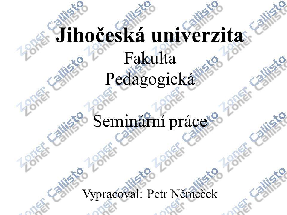 Vypracoval: Petr Němeček