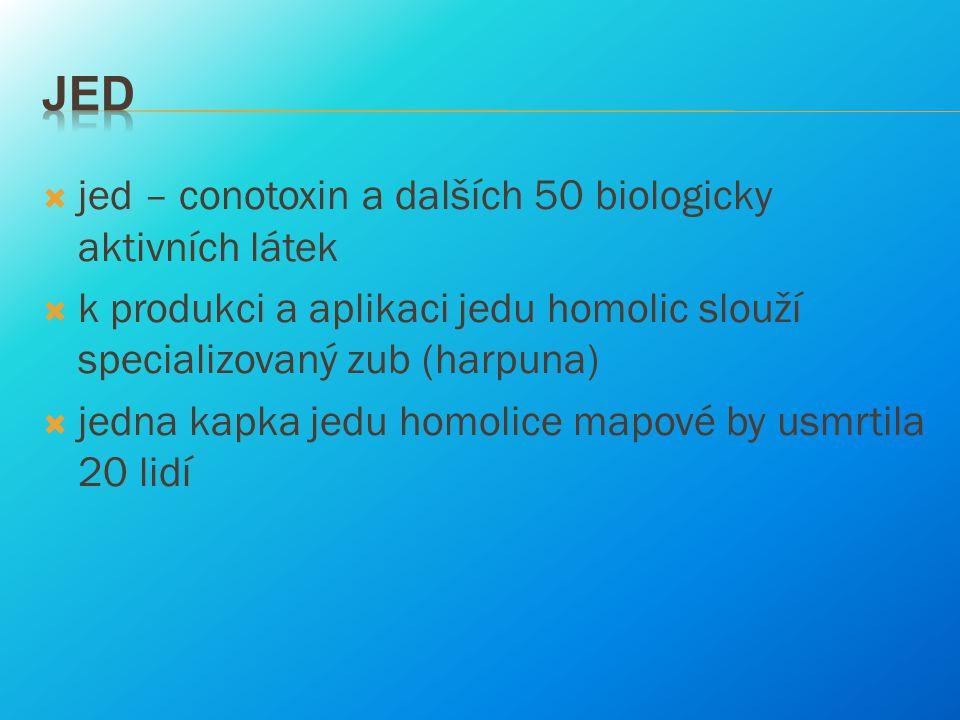 Jed jed – conotoxin a dalších 50 biologicky aktivních látek