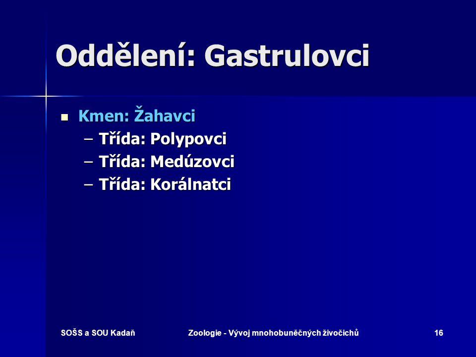 Oddělení: Gastrulovci