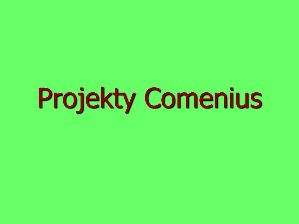 Projekty Comenius