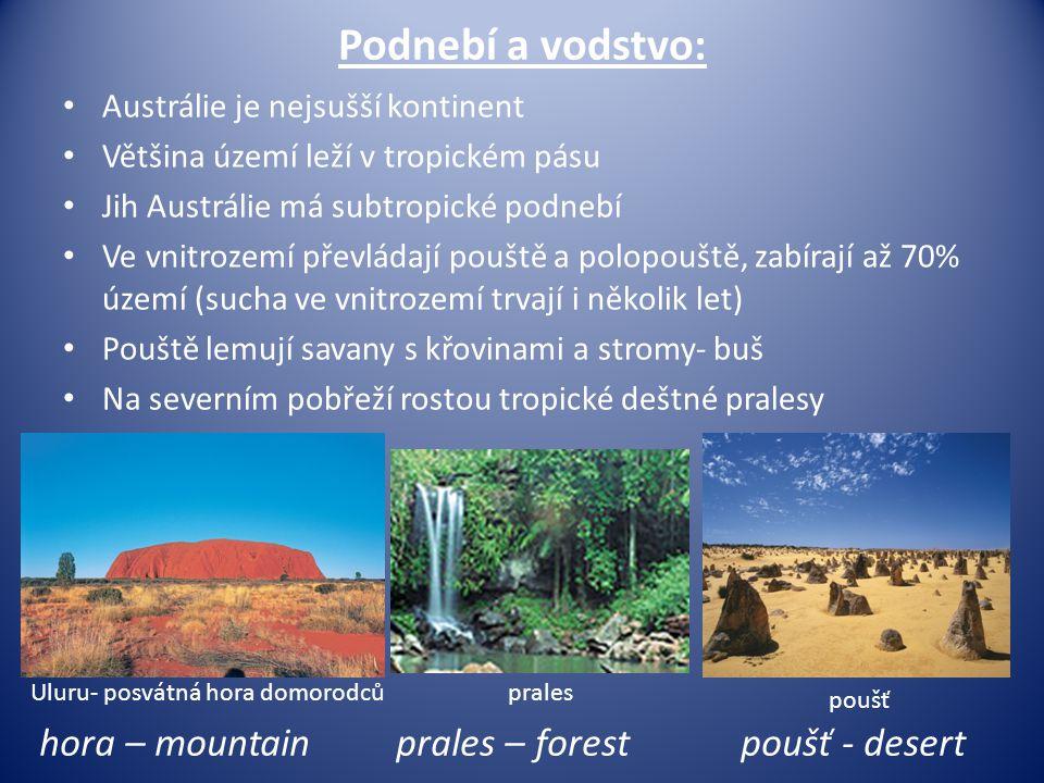 Podnebí a vodstvo: hora – mountain prales – forest poušť - desert
